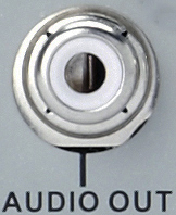 RCA Audio Output port