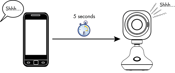 Illustration of 5 second delay between viewing device and camera
